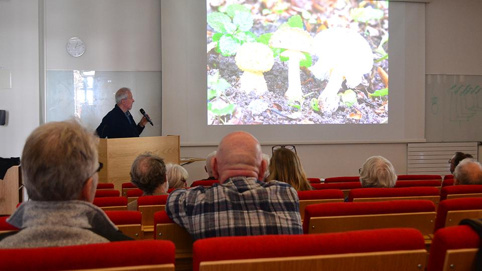 Claes Ingvert presenterade sin bok Ädellövskogens gömda svampar.
